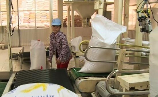 Làm sao để có thêm DN xuất khẩu gạo sang Trung Quốc?