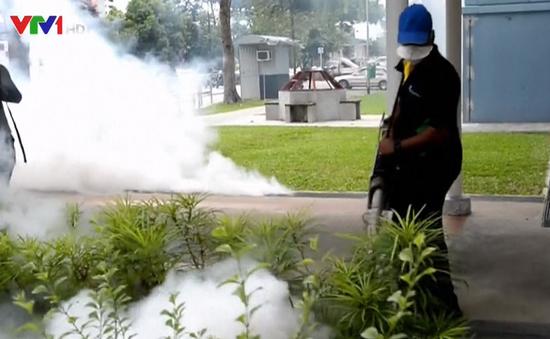 Singapore xác nhận thêm 2 ca nhiễm Zika