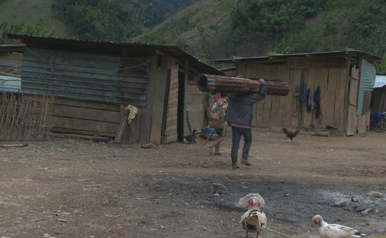 Quảng Nam: Người dân vùng lở núi còn nhiều khó khăn