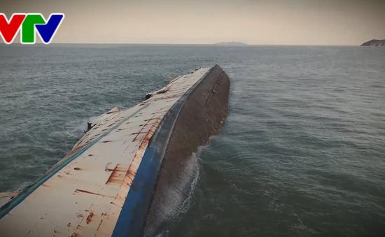Tạm giữ các mẫu vật liên quan đến vụ chìm tàu ở Bình Định