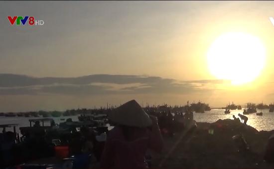 Nhộn nhịp chợ cá Bãi Phủ buổi sáng sớm