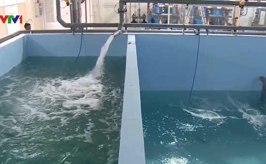 Khánh thành nhà máy xử lý nước nuôi tôm hiện đại