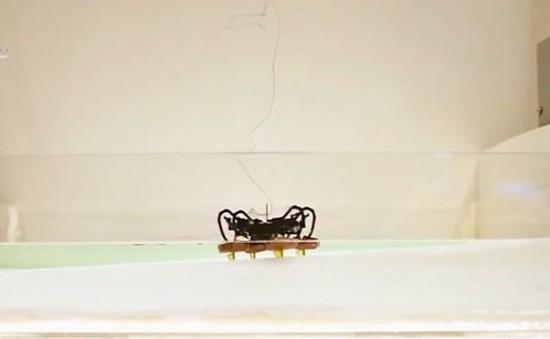 Robot đổ bộ có thể đi bộ và bơi trong nước