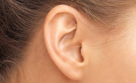 Xác định được loại protein có thể giúp lấy lại thính lực