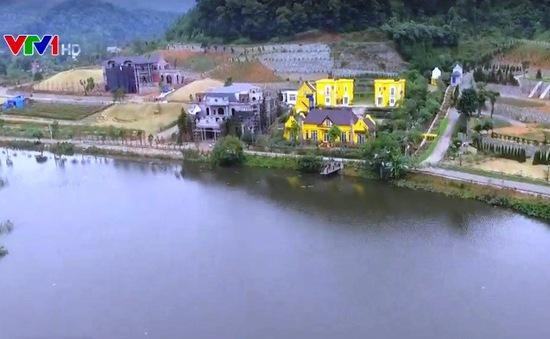 Thanh tra toàn diện đất rừng còn lại tại Sóc Sơn, Hà Nội