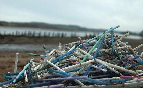 Ống hút nhựa và tăm bông có thể bị cấm trong một năm tới tại Anh