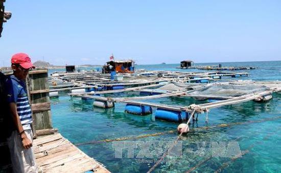Khánh Hòa hỗ trợ người nuôi thủy sản