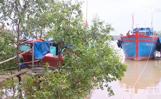 Nguy cơ lãng phí âu thuyền tiền tỷ ở Sầm Sơn, Thanh Hóa