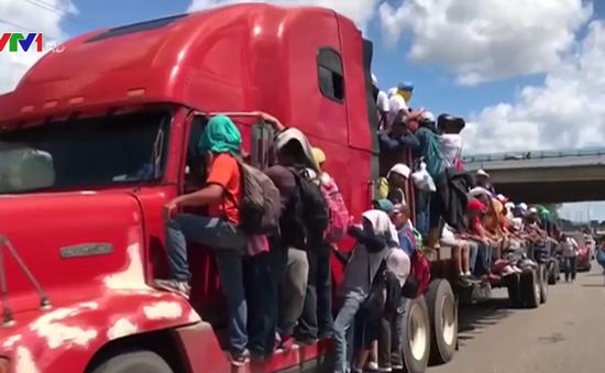 Chính sách nhập cư hay chiến lược thu hút cử tri của Tổng thống Mỹ?
