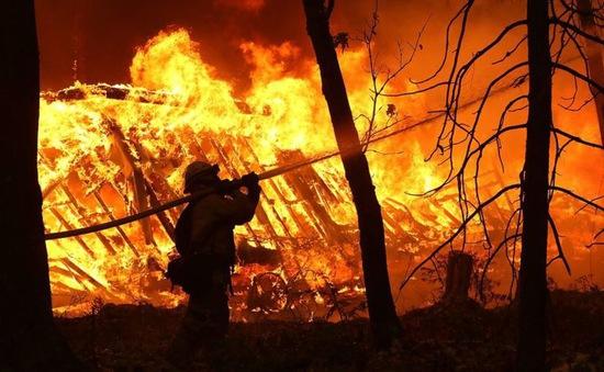 Hậu quả thảm khốc của cháy rừng ở California, Mỹ