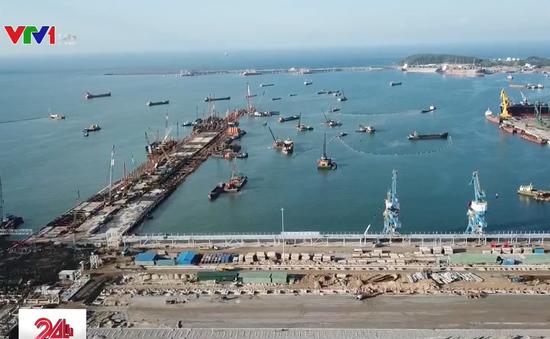 Vị trí nhận chìm vật chất nạo vét cảng Dung Quất: Không có rạn san hô, các sinh vật đặc hữu