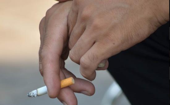 Những điều bạn cần biết trước khi định châm một điếu thuốc