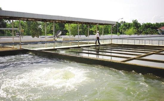 Vùng ven Đà Nẵng với nỗi lo thiếu nước sạch