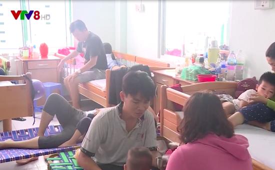 Bùng phát dịch sốt xuất huyết ở Khánh Hòa