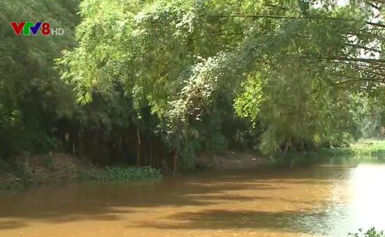 Nông nghiệp Quảng Nam đối phó với sự bất thường của thời tiết