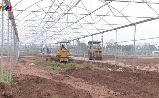Tháo gỡ rào cản trong tích tụ và tập trung ruộng đất