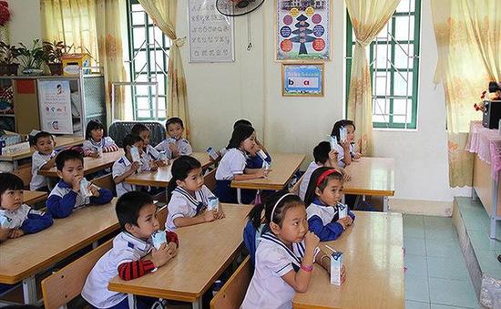 Bộ Y tế: Yêu cầu dùng sữa tươi cho chương trình Sữa học đường