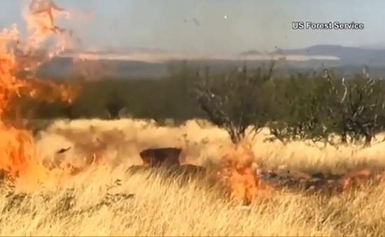 Tổ chức tiệc cho con, sĩ quan Mỹ vô tình đốt cháy 20.000 ha rừng