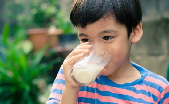 Nhiều ý kiến trái chiều về đề xuất bổ sung sữa lỏng cho chương trình Sữa học đường