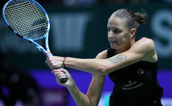 Karolina Pliskova sẽ không tham dự chung kết Fed Cup