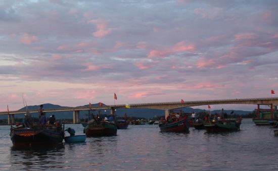 Không khí tấp nập tại các cảng cá lúc rạng sáng