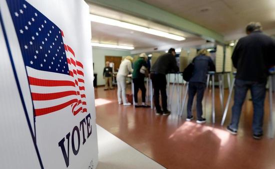 OSCE: Không có can thiệp nước ngoài vào bầu cử Quốc hội Mỹ