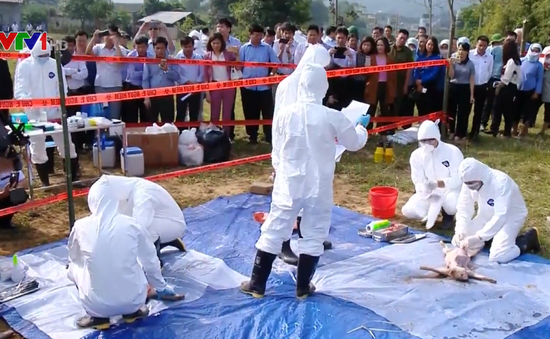 Mỹ hỗ trợ Việt Nam trong việc  kiểm soát dịch bệnh