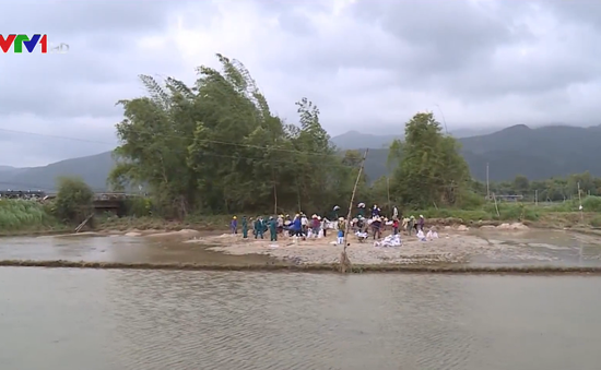 Bình Định khẩn trương khắc phục hậu quả mưa lũ