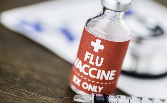 Ngày càng nhiều người Mỹ từ chối tiêm vaccine phòng cúm