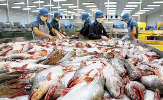 Năm 2018, dự báo kim ngạch xuất khẩu cá tra đạt 2,3 tỷ USD