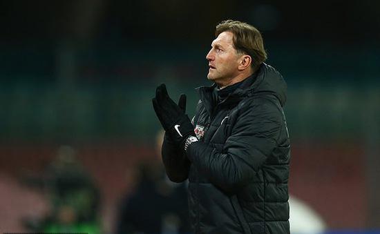Ralph Hassenhuttl chính thức trở thành HLV trưởng Southampton