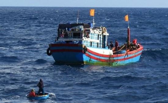 Nghệ An: Thuyền viên rơi xuống biển tử vong khi đang đánh cá