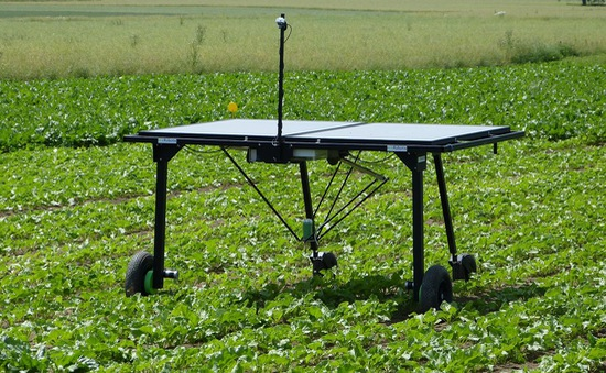 Robot diệt cỏ chạy bằng năng lượng mặt trời