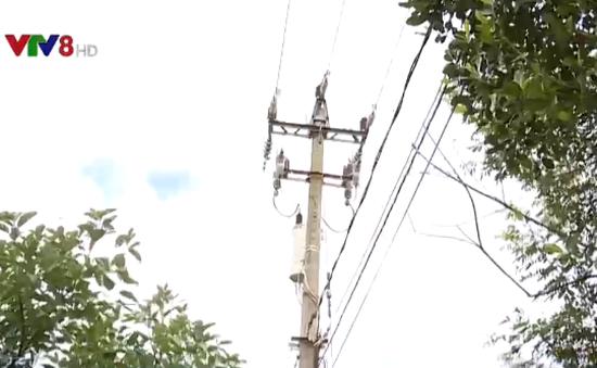 Đắk Lắk: Hàng nghìn hộ dân phải mua điện với giá cao