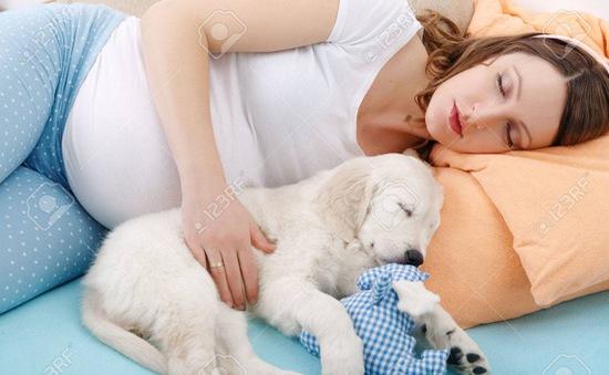 Nằm cạnh cún cưng giúp phụ nữ ngủ ngon hơn