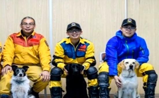 Chú chó anh hùng trong cứu hộ sau động đất ở Đài Loan, Trung Quốc
