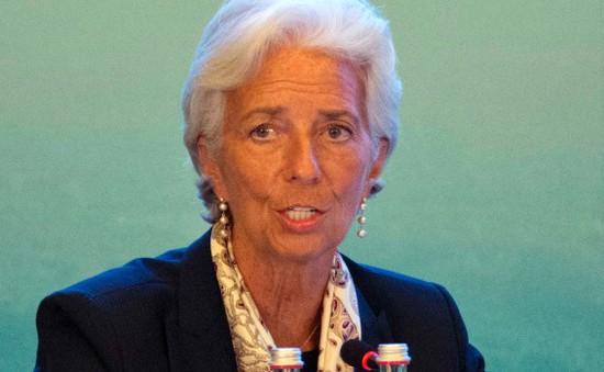 Giám đốc IMF bày tỏ sự lạc quan về làn sóng bán tháo của chứng khoán thế giới