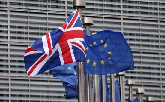 """Đảng """"Đổi mới"""" phát động chiến dịch phản đối Brexit tại Anh"""