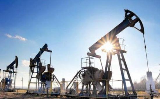 Giá dầu châu Á bật tăng