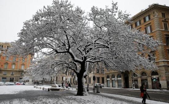 Giá rét, bão tuyết hoành hành châu Âu, 24 người thiệt mạng