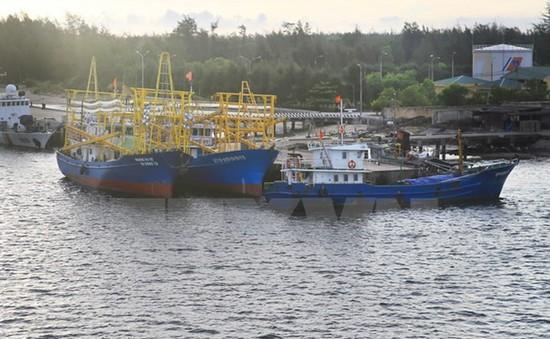 Nhật Bản hỗ trợ Quảng Trị lắp đặt gần 1.800 đèn LED cho tàu cá
