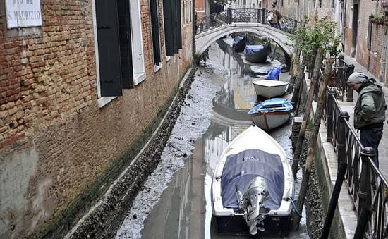 Venice cạn nước vì siêu trăng