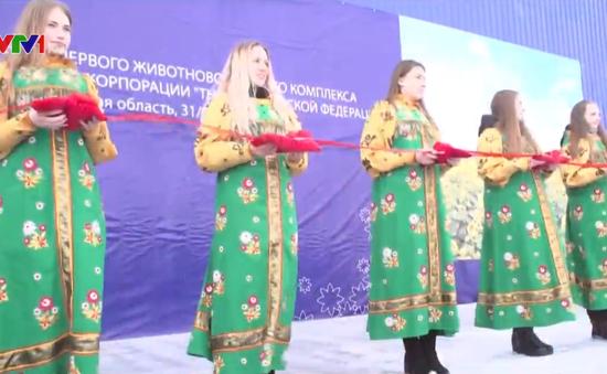 Tập đoàn TH khánh thành trang trại bò sữa tại Nga