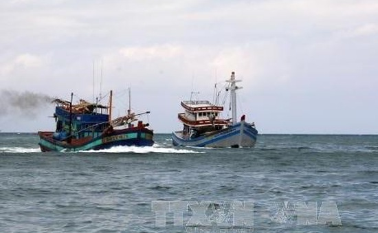 Quảng Ninh: Cứu hộ thành công 8 ngư dân gặp nạn trên biển