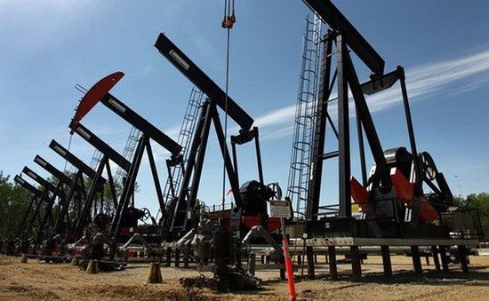 Giá dầu bật tăng trở lại sau 3 phiên liên tiếp sụt giảm