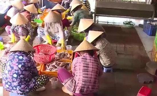 Bà Rịa - Vũng Tàu: Siết chặt an toàn vệ sinh thực phẩm tại các cơ sở chế biến cá khô