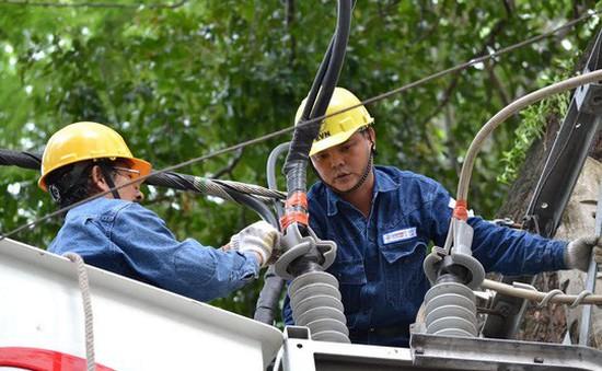 Chỉ đạo quản lý và sử dụng điện an toàn tại Cà Mau