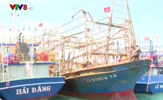 Bình Định: Mạnh tay xử lý chủ tàu xâm phạm vùng biển nước ngoài