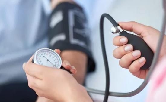 Thảo dược quý nào giúp điều trị cao huyết áp?