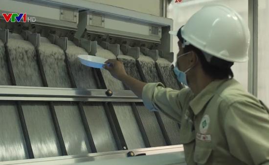 Gạo ST24 đạt chứng nhận chuẩn hữu cơ quốc tế